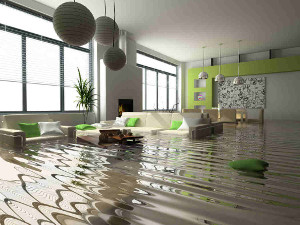water and flood extraction gold coast